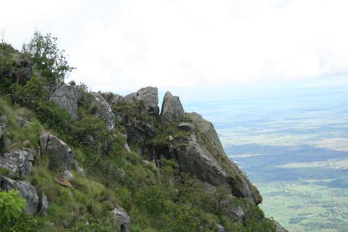 Zombagarglingorilla