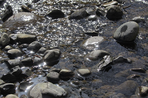 Riversun