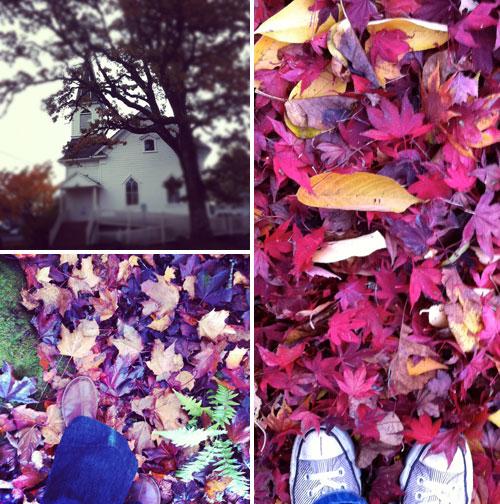 Autumnwalk1